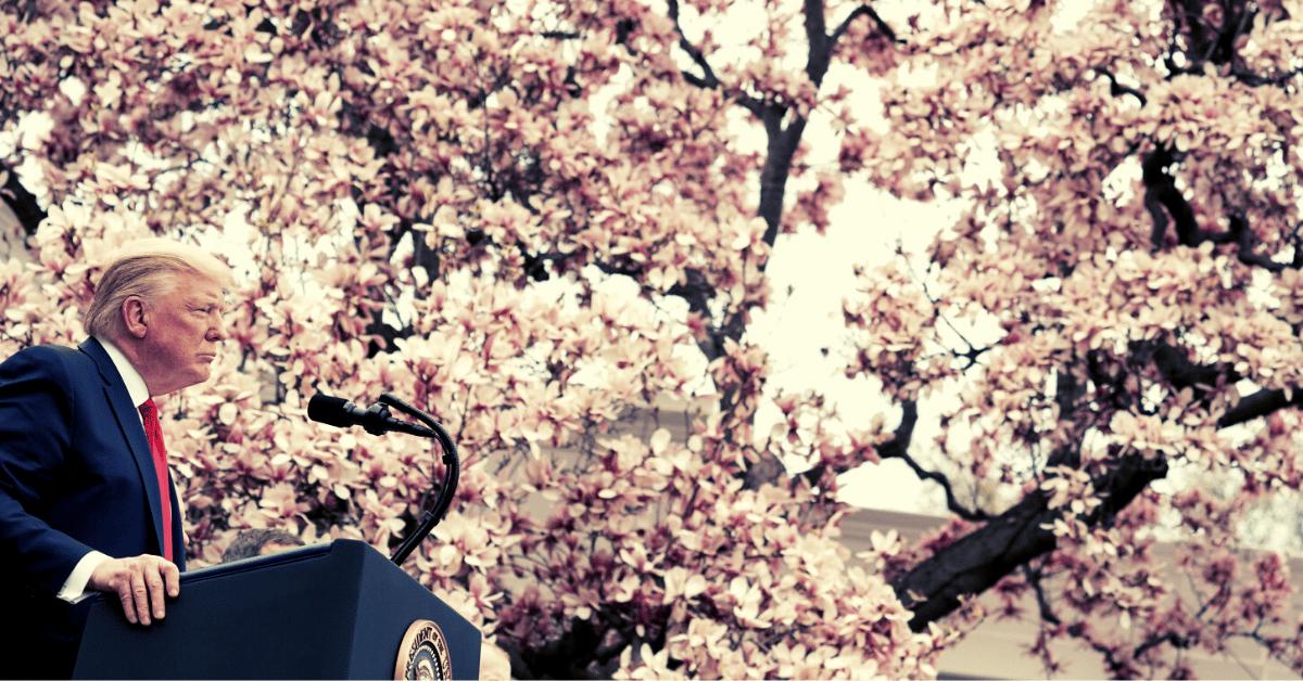 Trump via White House Flickr